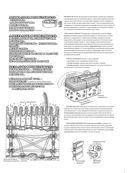 Физиология человека: атлас-раскраска — фото, картинка — 13