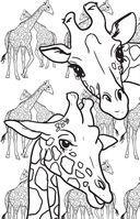 Удивительные животные. Мини-раскраска-антистресс для творчества и вдохновения — фото, картинка — 5