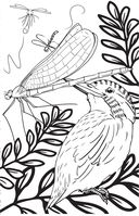 Удивительные животные. Мини-раскраска-антистресс для творчества и вдохновения — фото, картинка — 8