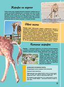Самая невероятная книга о животных — фото, картинка — 13