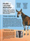 Самая невероятная книга о животных — фото, картинка — 14