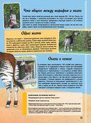 Самая невероятная книга о животных — фото, картинка — 15