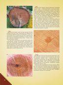 Большая энциклопедия мастера золотые руки — фото, картинка — 8