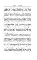 Танкист Мордора — фото, картинка — 13