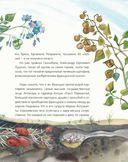 Жизнь замечательных растений — фото, картинка — 13