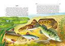 Жизнь в пресной воде — фото, картинка — 1