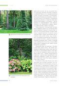 Ландшафтный дизайн. Своими руками - от проекта до воплощения — фото, картинка — 14