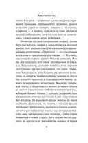 Авантюристка. В 4 книгах. Книга 4. Посланница судьбы — фото, картинка — 7