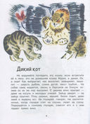 Это всё кошки — фото, картинка — 4