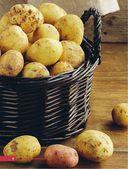Картофель и капуста. Секреты урожая от Октябрины Ганичкиной — фото, картинка — 3