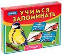 Учимся запоминать. Птицы — фото, картинка — 1