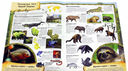 Тропический лес. МегаZOOпанорама — фото, картинка — 1