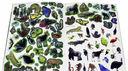 Тропический лес. МегаZOOпанорама — фото, картинка — 2
