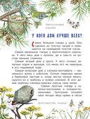 Лесные домишки — фото, картинка — 4