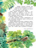 Лесные домишки — фото, картинка — 6