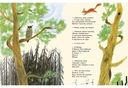 Лесные разговоры — фото, картинка — 3