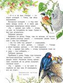 Рассказы и сказки о природе — фото, картинка — 15