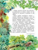 Рассказы и сказки о природе — фото, картинка — 8