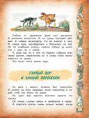 М. Зощенко. Рассказы для детей — фото, картинка — 4