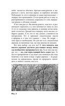 Обрезка без секатора и другие нетравмирующие приемы формировки кроны — фото, картинка — 10