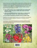 Лекарственные растения. Большая иллюстрированная энциклопедия — фото, картинка — 16