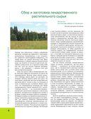 Лекарственные растения. Большая иллюстрированная энциклопедия — фото, картинка — 6