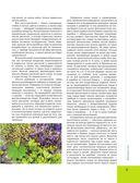 Лекарственные растения. Большая иллюстрированная энциклопедия — фото, картинка — 7