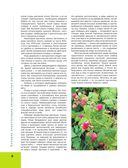 Лекарственные растения. Большая иллюстрированная энциклопедия — фото, картинка — 8