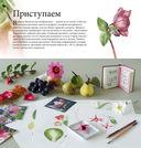 Ботанические портреты. Практическое руководство по рисованию акварелью — фото, картинка — 15