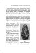 История культуры татуировок, пирсинга, скарификации, клеймения и вживления имплантатов — фото, картинка — 9