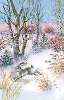 Мороз и солнце. Стихи русских поэтов о зиме — фото, картинка — 1